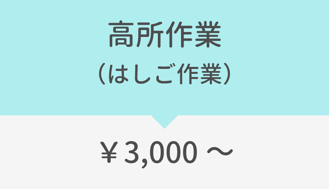 高所作業(はしご作業)3000円~